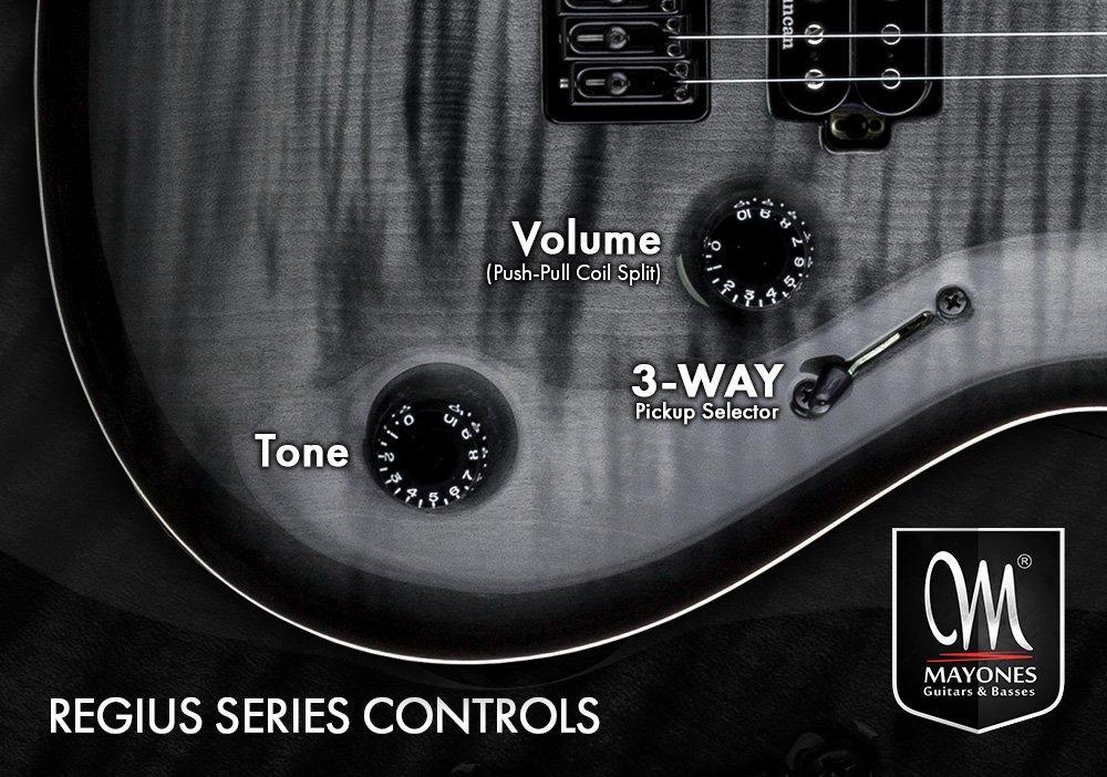 Regius Series Guitars Control Layout
