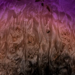 Violet Supernova (Burl Maple)
