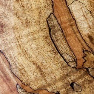 Transparent - Spalted Maple
